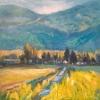 Skagit Fields