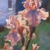 Peach Irises